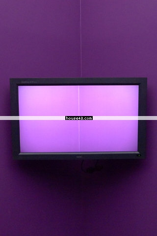Purple Screen - Desktop Wallpaper