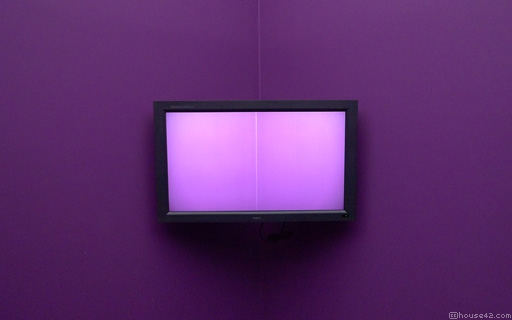 Purple Screen - Desktop Wallpaper