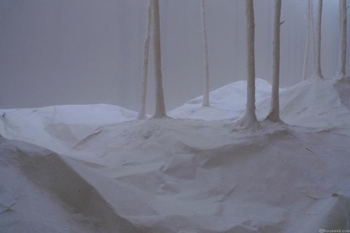 Wald aus Wald - Installation